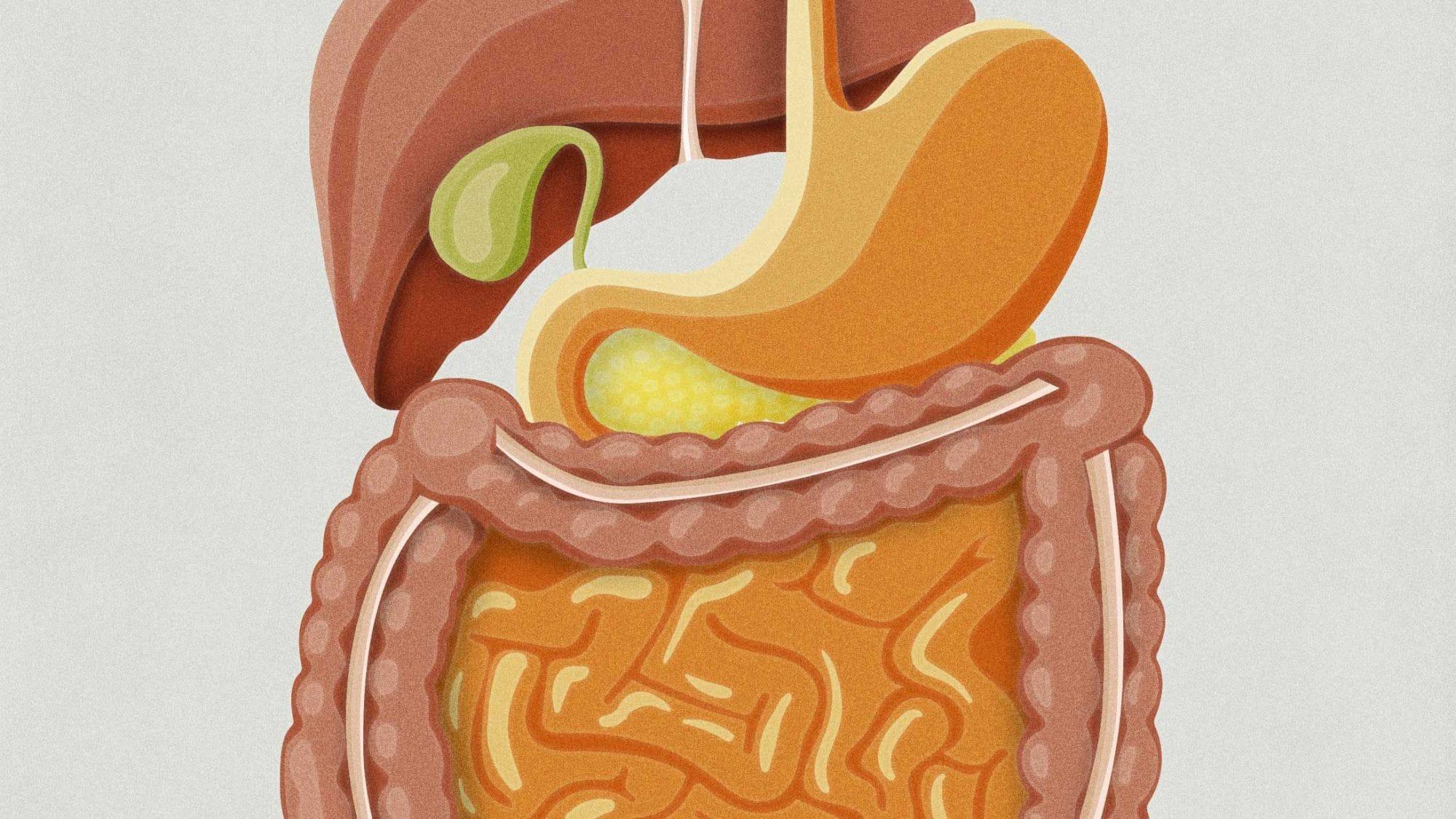 KSB Microsite Bauch